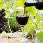 Resveratrol Anti Aging