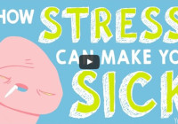 how stress affects you